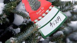 Real Christmas Trees Help Keep Canada's Economy