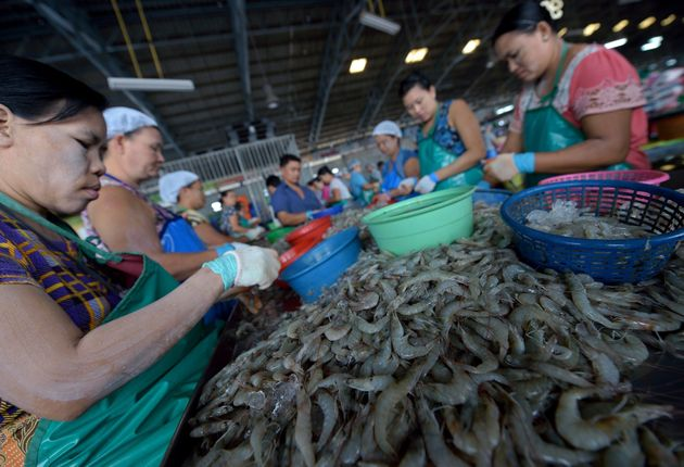 Slavery In Shrimp Industry Prompts Calls For A