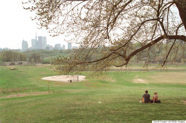 Beauty In Unexpected Areas: Toronto's Hidden
