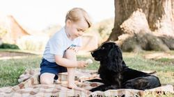 Royals Accused Of Animal Cruelty Over Prince George