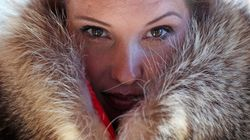 Company Challenges Fur Industry With Roadkill