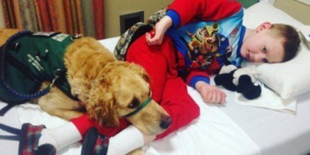Autism Service Dogs And Their Mini-Humans Will Win Your