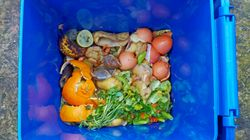 What We Can Do About Canada's Food Waste