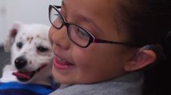 Deaf Girl Teaches Her Deaf Puppy And All Is Right In The