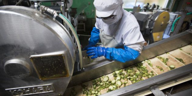 A worker checks the chopped up rhizomes of wasabi plants on the production line of the Marui Co. factory...