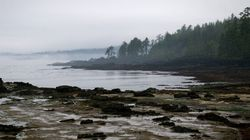Another Human Foot Washes Up On Same Vancouver Island