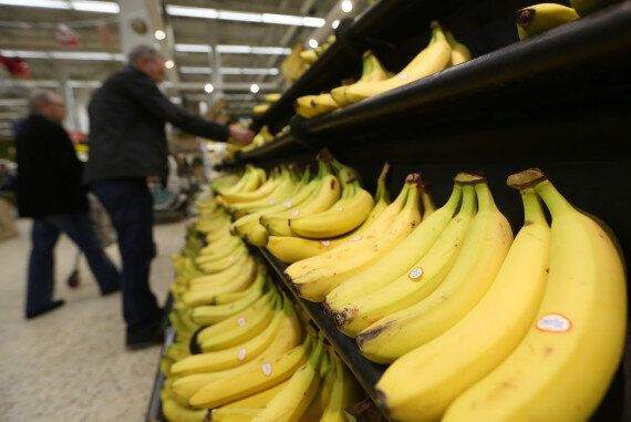 Bananas Under Threat By Deadly Disease, Could Disappear