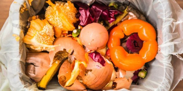 Kitchen food compost in a