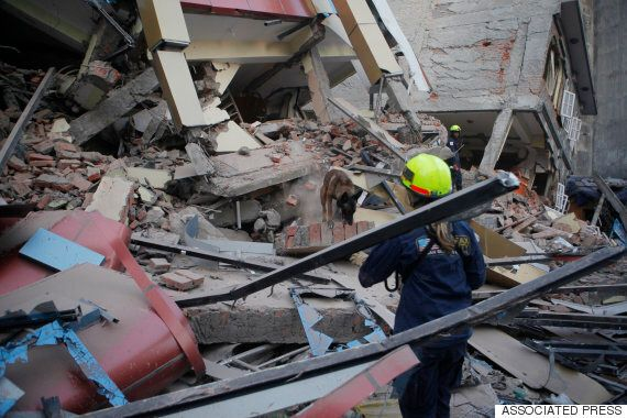 MyShake, Early Earthquake Detection App, Could Be Available To