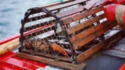 Restaurant Vandalized After P.E.I. Monks Set Lobsters