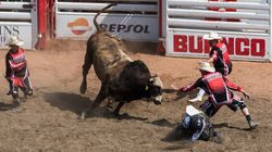 Study Debunks Common Myth About Calgary Stampede's