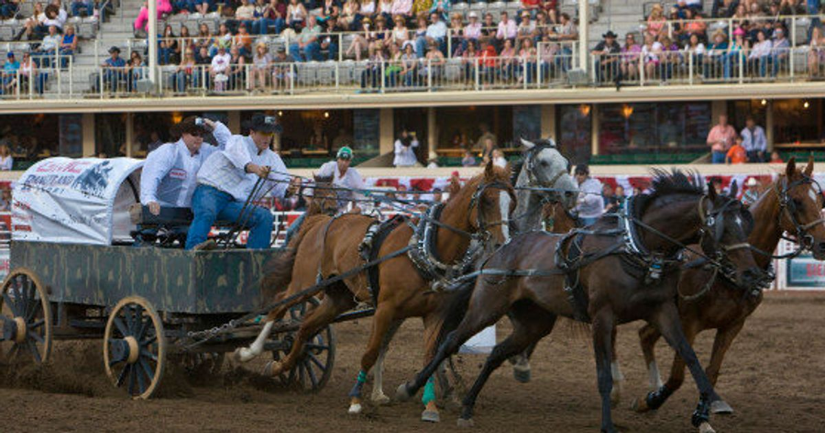 Calgary Stampede Makes Chuckwagon Safety A Priority