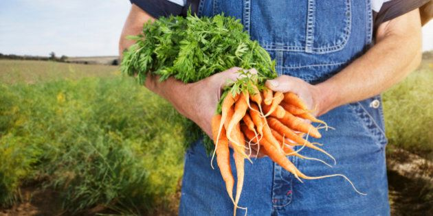 Farmer holding