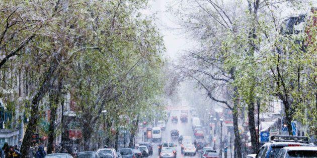 Snowstorm, Saint-Denis street, Montreal, Quebec