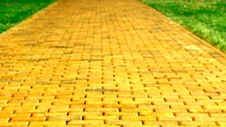 Mistakes Form the Yellow Brick Road to