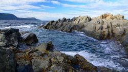 15 Ways To Explore St. John's In The