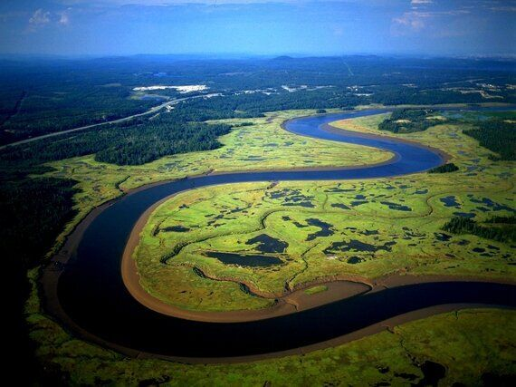 Caring For Canada's Wetlands -- Before It's Too