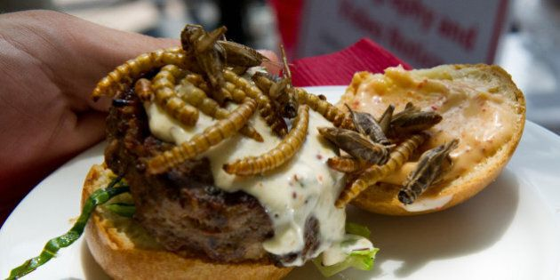 Grasshopper Burgers, Scorpion Lollipops And Other Unusual