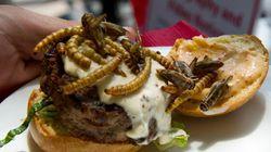 Grasshopper Burgers, Scorpion Lollipops,