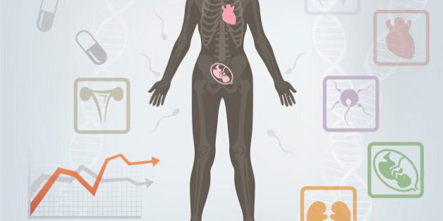 Diagram illustration about structure of the human body