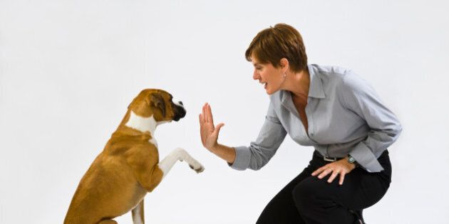 Woman with boxer dog