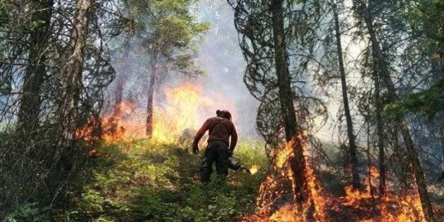 B.C. Wildfire Service Sees Applications Surge After Record-Breaking