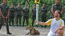 Jaguar Used In Olympic Torch Ceremony Shot