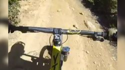 Mountain Biker Wipes Out After Running Into