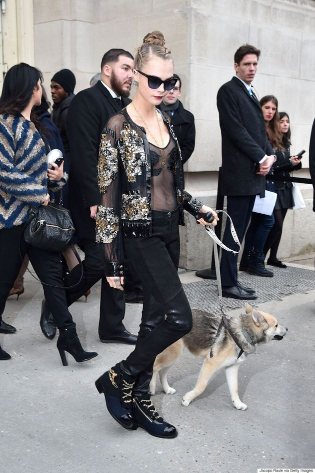 Cara Delevingne Sits Front Row With A Dog At Chanel Couture Spring 2016