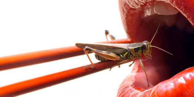 'a wacky take on sushi, red lips getting ready to eat a live grasshopper with