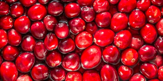 I take a variation of this picture probably every year, since I am always delighted by the look and feel of fresh cranberries floating in their bath.