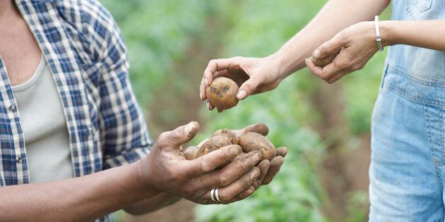 Woman passing potatoes to man on