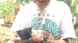 Un papi élève secrètement des chatons malgré l'interdiction de sa