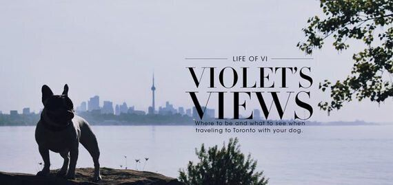 Life Of Vi: Violet's Views From The