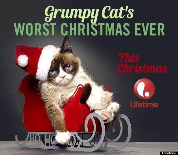 Grumpy Cat To Film Christmas Movie In