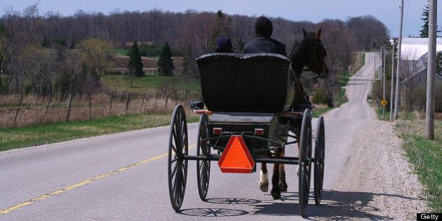 Man in horse and buggy, Elmira, Ontario,