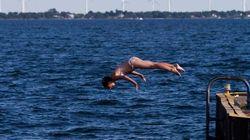 Attempt To Swim Lake Ontario Somes Up