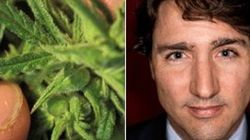 Trudeau Liberals Launch Pot