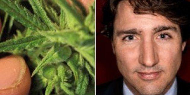 Trudeau Liberals Launch Petition To End Marijuana