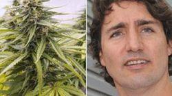 LOOK: How Trudeau's Pot Position Has