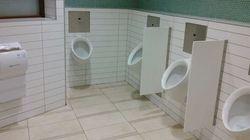 B.C. Mall Urinals Better Than