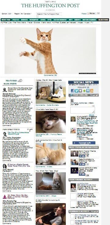 Huffington Post Canada Front Page: Cats, Cats,