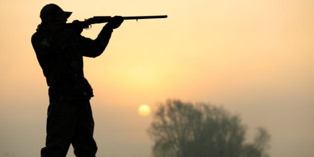 High River Gun Seizures Key Issue In Macleod Byelection Conservative