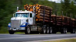 Outdated Logging Rules Mean Risk, Says