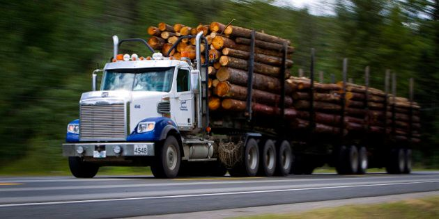 A logging truck transports a load of newly cut logs down Highway 97 in Quesnel, British Columbia, Canada,...