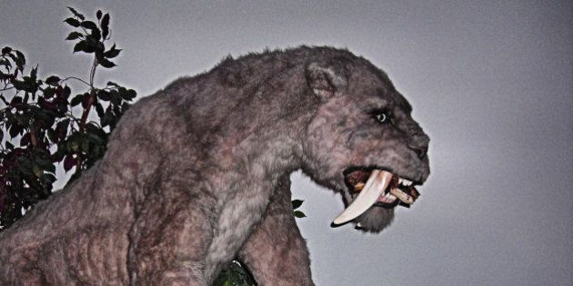 Walk With Beasts exhibition, Horniman Museum, London.The Smilodon is also colloquially known as Saber-toothed...