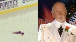 WATCH: Don Cherry Slams Fan For
