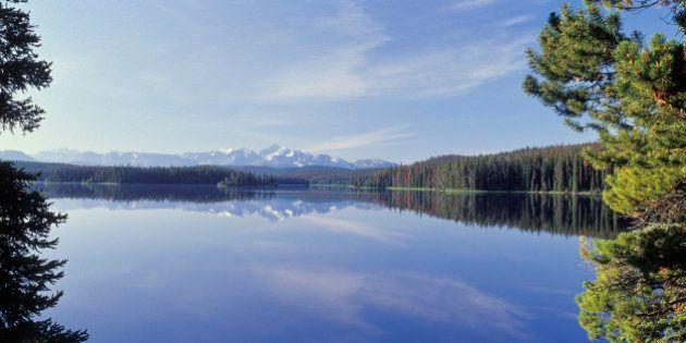 Taseko Prosperity Mine Environmental Study Predicts Death Of Fish