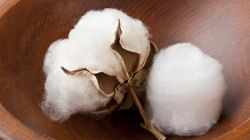 Eating Cotton And 10 Other CRAZY Diet