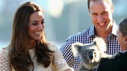 Kate Steals Attention Away From Koala In Chic